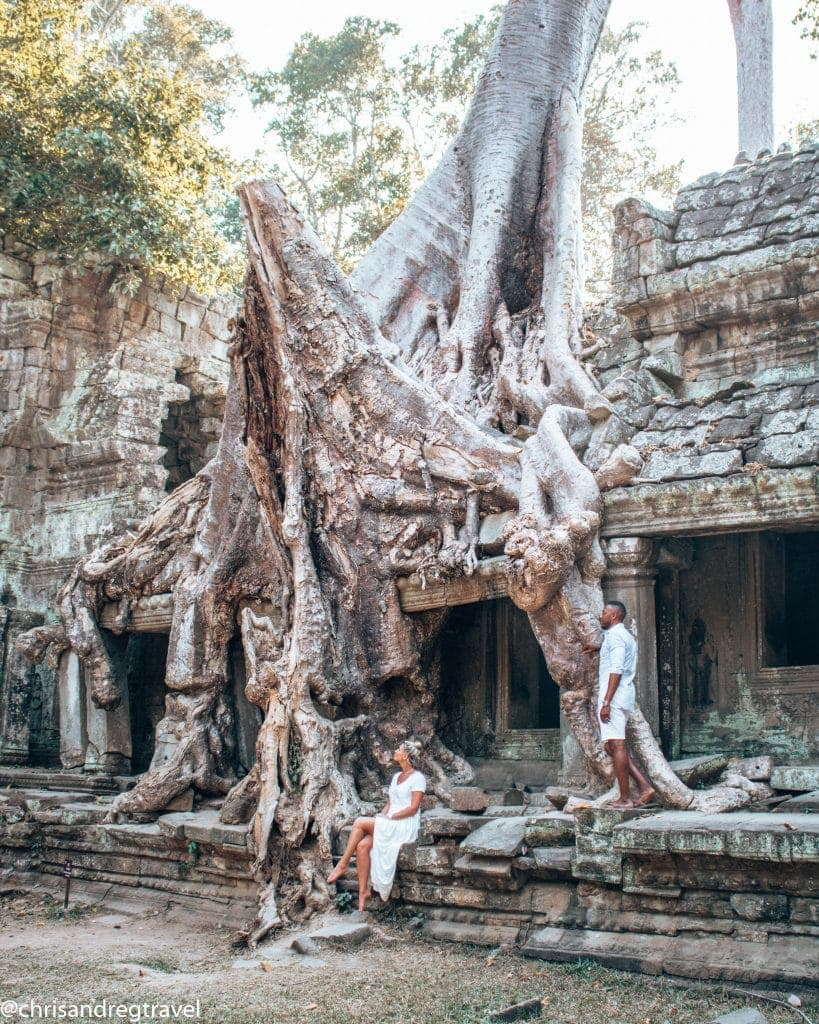 Amazing Old Tree is Rooted Into the Temple of Ta Prohm