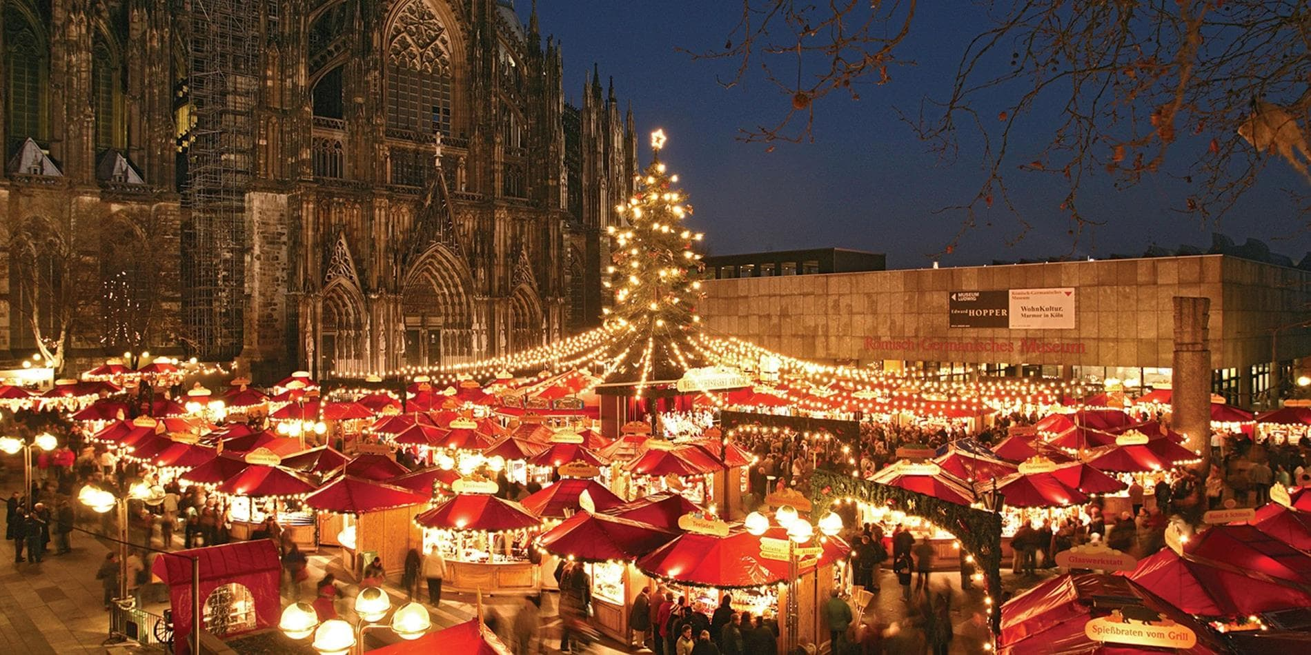 Cologne Christmas Market in front of the Cologne Cathedral